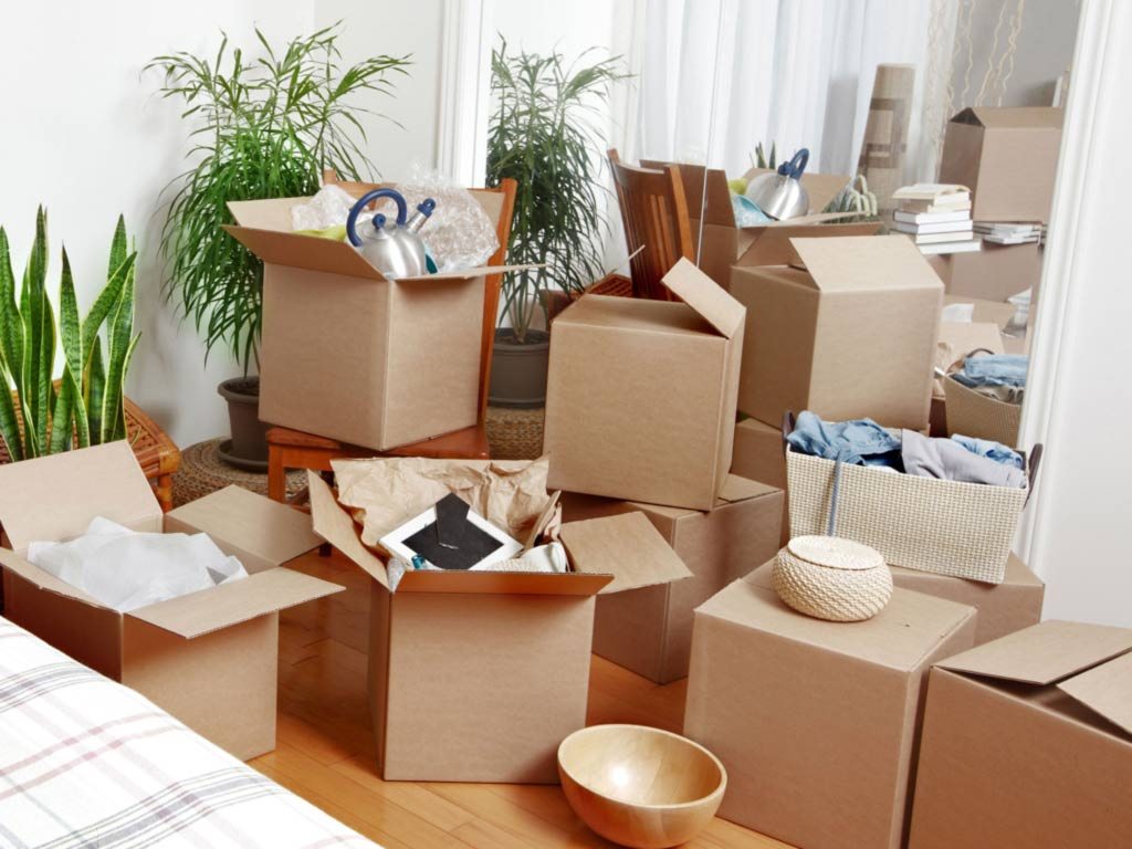 Removalist Services