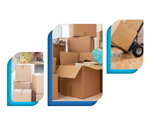 Expert Removalist Services